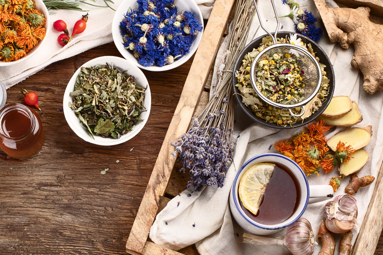 Holistic Care The Power Of Herbs